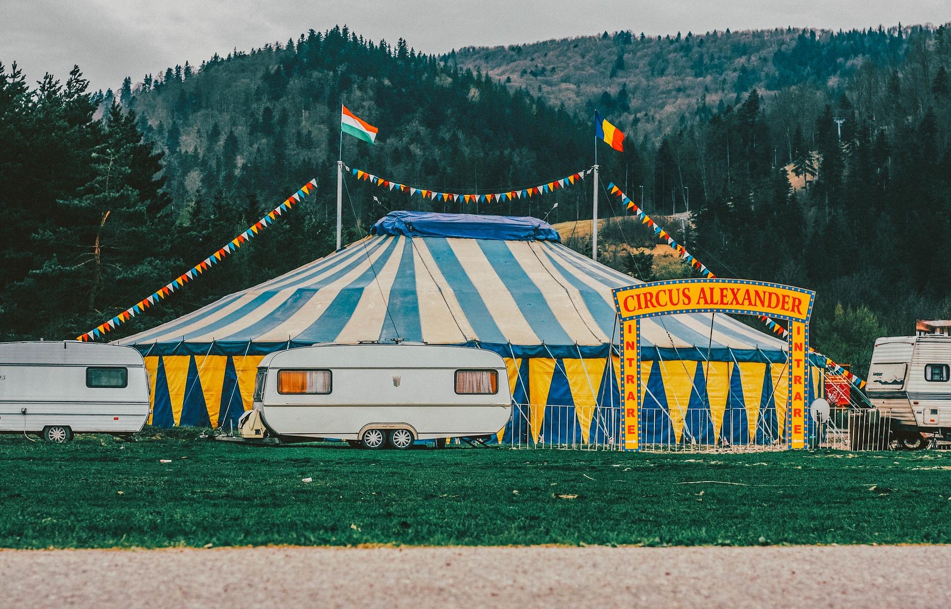 Les spectacles populaires au cirque