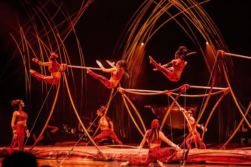 Les bienfaits du cirque